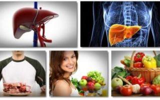 Эффективные профилактические меры по предотвращению цирроза печени