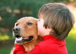 Несоблюдение правил гигиены после контакта с собаками